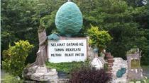 Full Day Nature Excursion to Bukit Patoi Temburong, Bandar Seri Begawan, Cultural Tours