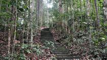 Full Day Sungai Liang Forest Reserve Nature Escapade, Bandar Seri Begawan, Cultural Tours