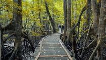 Selirong Island Mangrove Tour, Bandar Seri Begawan, Cultural Tours