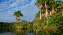 2 days 1 night - Tambopata Jungle, Puerto Maldonado, Overnight Tours
