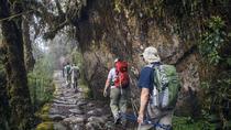 4-Day Classic Inca Trail to Machu Picchu, Cusco, City Tours
