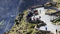 Colca Canyon in One Day from Arequipa, Arequipa, Full-day Tours