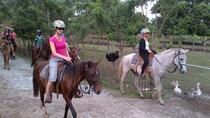 Glide and Ride Adventure with Tropical Petting Zoo, Puerto Plata, Ziplines