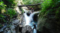 Shore Excursion: All 27 Waterfalls of Damajagua, Puerto Plata, Ports of Call Tours