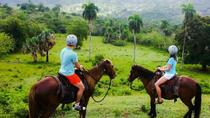 Shore Excursion: Glide N' Ride - Zip Lines & Horseback riding, Puerto Plata, Ports of Call Tours