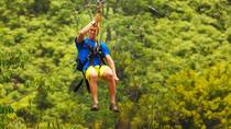 Zipline Adventure and Tropical Zoo, Puerto Plata, Ziplines