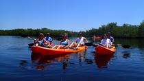 All Day Standup Kayak Rental, Islamorada, Kayaking & Canoeing