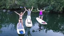 All Day Standup Paddleboard Rental, Islamorada, Stand Up Paddleboarding