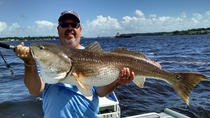 Half Day Sarasota Fishing Charter, Sarasota, Fishing Charters & Tours