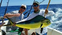 Deep Sea Fishing Private Boat Charter in San Juan, San Juan, Fishing Charters & Tours