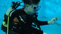 Scuba Diving in East Costa del Sol, Costa del Sol