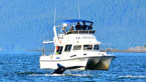 Private, personal Whale-watching, Juneau, Cultural Tours
