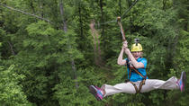 Nashville Zipline Adventure at Fontanel, Nashville