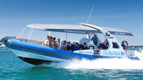 Seal Island Boat Tour from Victor Harbor, South Australia, Day Cruises
