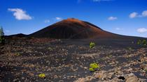 Tenerife Chinyero Volcano and Winery Tour with Wine, Tenerife, Wine Tasting & Winery Tours