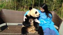 1 Day Panda Volunteer Program Plus Dujiangyan Highlight Private Tour Including Lunch, China, Day ...