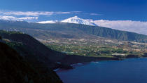 1-day Trip Tenerife from Gran Canaria, Gran Canaria, Day Trips