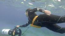 1-Hour Power Snorkel Experience in Las Canteras, Gran Canaria, Snorkeling