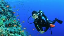 2-Hour Scuba Diving Experience for Beginners, Gran Canaria, Scuba Diving