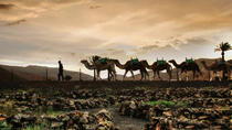 2-Hour Sunset Photography Tour in Western Lanzarote, Lanzarote, Photography Tours