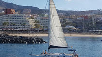 3-Hour Boat Trip from Costa Adeje in Tenerife, Tenerife, Day Cruises