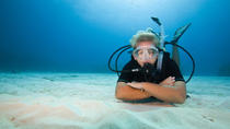 3-Hour Scuba Diving Baptism in Las Canteras Beach, Gran Canaria, Scuba Diving