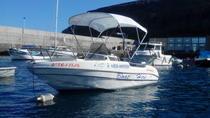 4-hour Boat Rental in La Gomera with licence required, La Gomera, Boat Rental