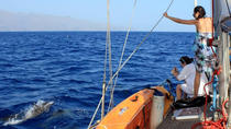 4 or 7-hour Experience on Sailboat from Valle Gran Rey, La Gomera, Day Cruises