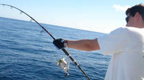 6-hour sport fishing by boat from Pasito Blanco, Gran Canaria, 4WD, ATV & Off-Road Tours