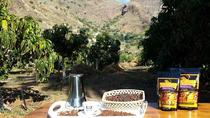90-Minute Coffee Production Tour at Finca los Castaños in Gran Canaria, Gran Canaria, Coffee &...