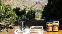 90-Minute Coffee Tour at Finca los Castaños in Gran Canaria, Gran Canaria, Coffee & Tea Tours