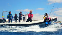 90-Minute Kitesurfing Private Course in Gran Canaria, La Palma, Surfing & Windsurfing