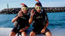 Caleta de Fuste Small-Group Guided Snorkeling Experience, Fuerteventura, Snorkeling
