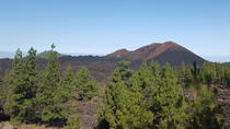 Chinyero Volcano Circuit Route, Tenerife, Hiking & Camping