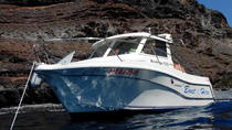 Exclusive Boat Trip for 5 people in La Gomera, La Gomera, Day Cruises