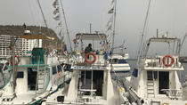 Fishing Day Charter at Puerto Rico in Gran Canaria, Gran Canaria, Fishing Charters & Tours
