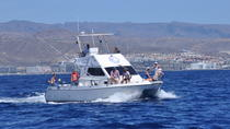 Full-Day Sport Fishing at Puerto Rico in Gran Canaria, Gran Canaria, 4WD, ATV & Off-Road Tours