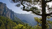 Guided Walking Route to Caldera de Taburiente, Tenerife, Day Trips