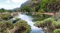 Las Palmas de GC, Crater and Jardín Canario, La Palma, Day Trips