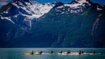 Inside Passage Sea Kayaking from Skagway, Skagway, Kayaking & Canoeing