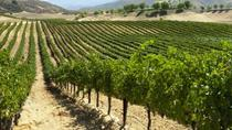 Napa and Sonoma PRIVATE GROUP Tour, San Francisco, Wine Tasting & Winery Tours