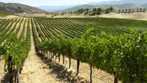 Private Napa and Sonoma Wine Tasting Tour from San Francisco, San Francisco, Wine Tasting & Winery ...