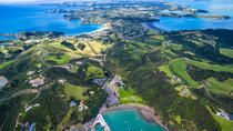 Private Shore Excursion: Waiheke Island Shopping Trip including Lunch and Winery Visit, オークランド