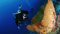 PADI Discover Scuba Diving in Paraiso, Playa del Carmen, Scuba Diving