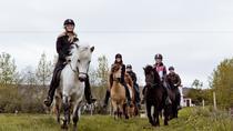 Horseriding tour in Akureyri, Akureyri, Day Trips