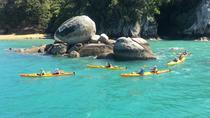 Full-Day Biking and Kayaking Adventure: Nelson to Kaiteriteri, Nelson, Bike & Mountain Bike Tours