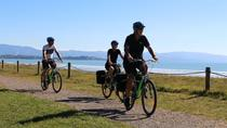 Full-Day Self-Guided Cycle and Sail Adventure from Nelson, Nelson, Sailing Trips