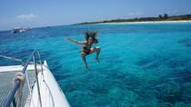 Prestige Catamaran Cruise to Catalina Island, La Romana, Day Trips