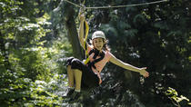 Zipline Canopy Tour with Transportation from Seattle, Seattle, Ziplines