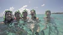Icacos Snorkel and Beach Package from Fajardo, Fajardo, Day Cruises